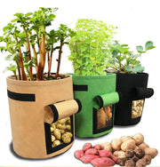 Planting bag - Potato