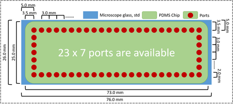 PDMS-chip-ports-layout