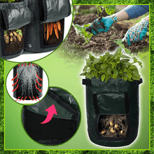 Load image into Gallery viewer, Potato Cultivation Planting Bags