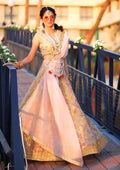 Traditional Festive Bridal Collection HAB-005