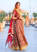 Traditional Festive Bridal Collection HAB-007