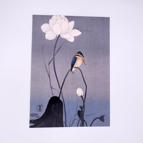 Kingfisher and Lotus Art Print (A4)