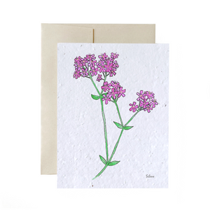 Plantable card - Catchfly