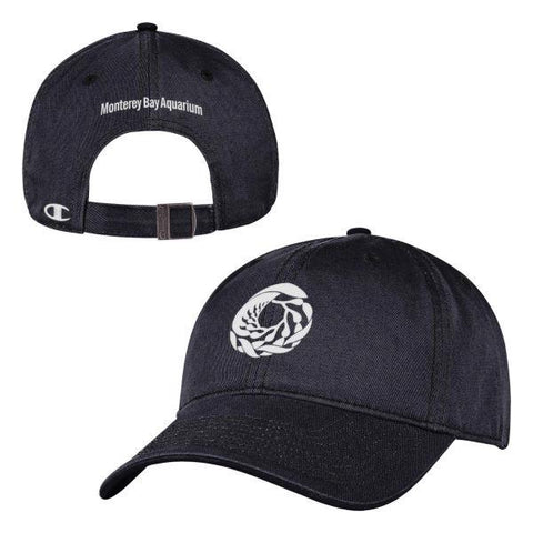 Champion adult black logo baseball hat