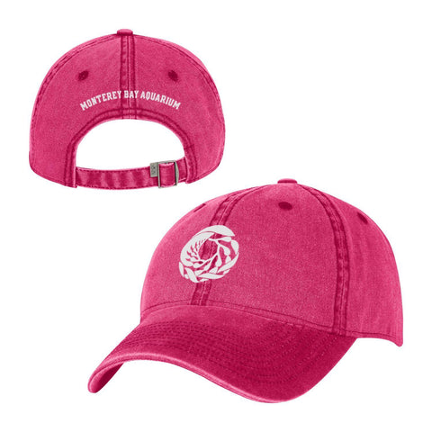 Adult watermelon logo baseball hat