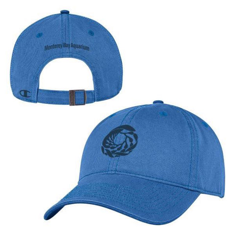 Champion adult blue breeze baseball hat