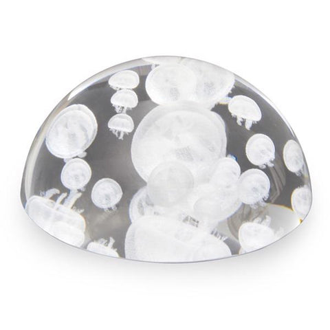 Glass paperweight dome moon jellies