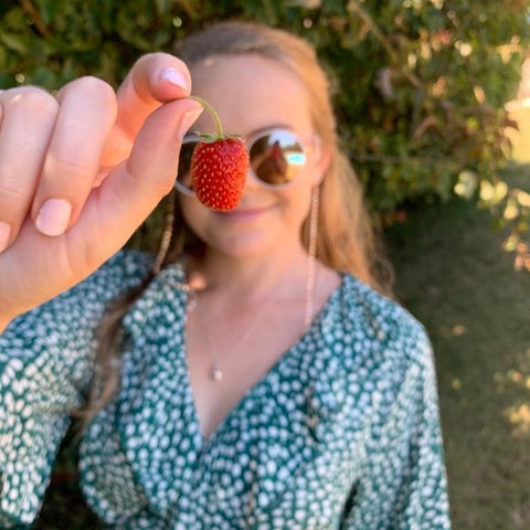 Hotel Guest harvests organic strawberry