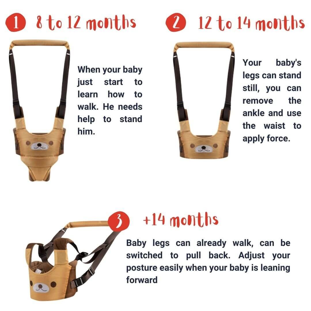 Accompany your baby all along the walking learning process