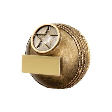 Cricket Mini Ball