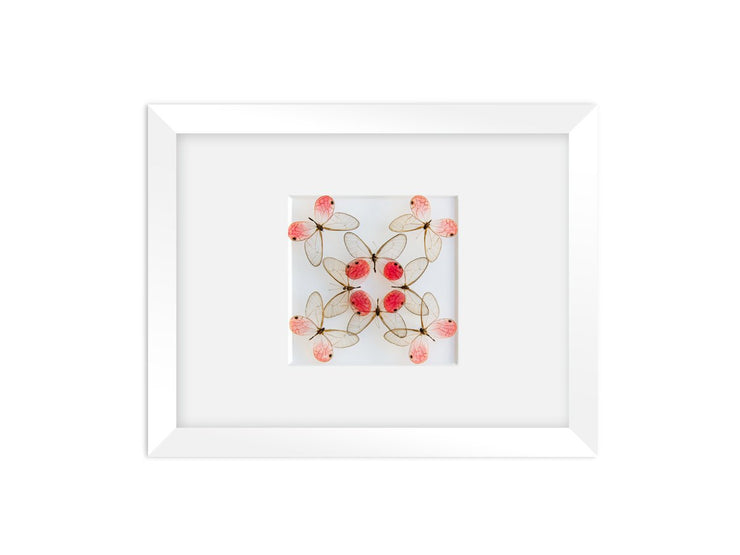 CUADRO HOME DECOR DE 8 MARIPOSAS   sku:36151