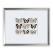 CUADRO HOME DECOR CON 9 MARIPOSAS sku:34987