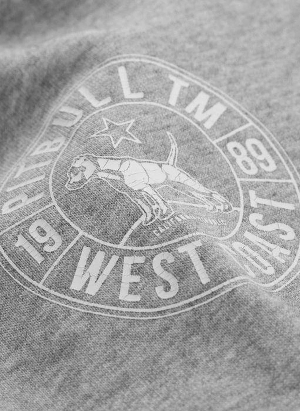 Crewneck OLD SCHOOL Grey - Pitbull West Coast U.S.A.