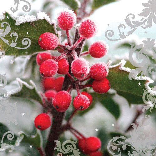 Winter Berries Holiday Cards Pack of 10