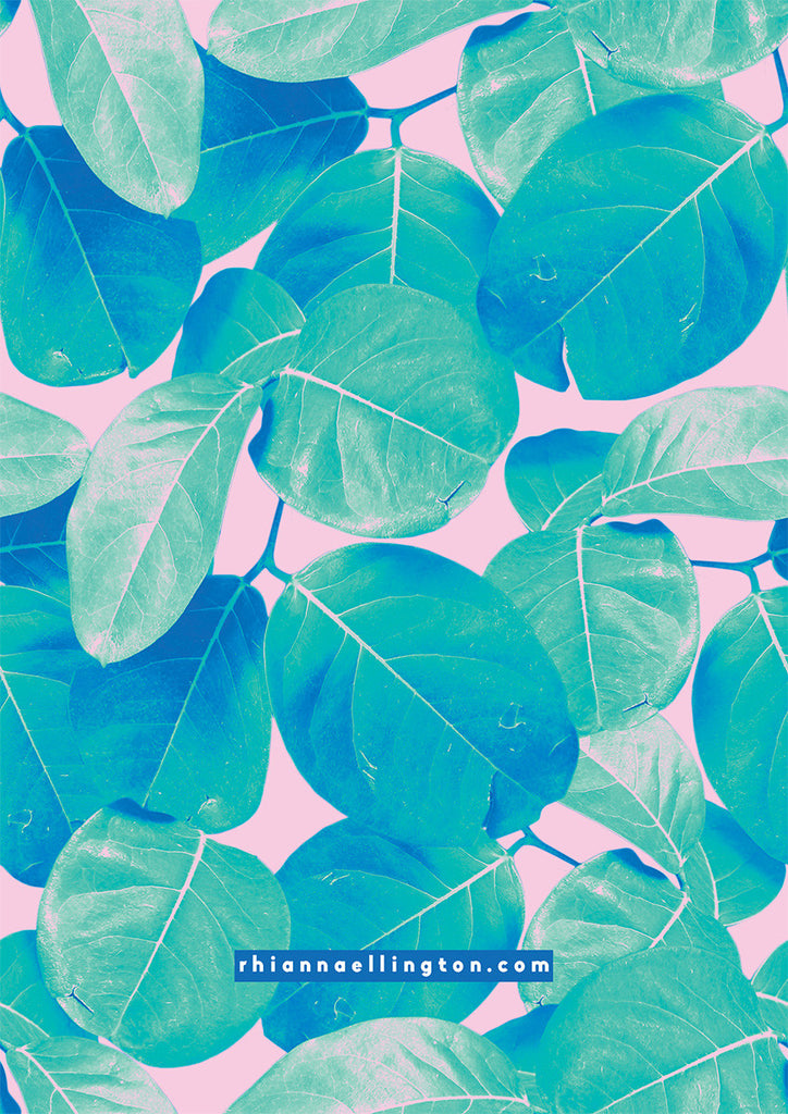 A5 Rubber Plant Note Pad