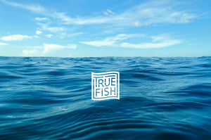 Hi, We're Truefish!