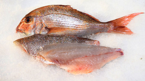Madai/Red Seabream, Whole (3lb)