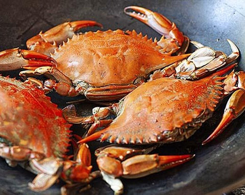 Dungeness Crab, Cooked (Washington)