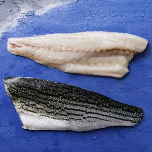 Striped Bass/スズキ Fillet (skin on, sustainably raised)