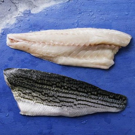 Striped Bass - Fillet, スズキ (Baja) - avg 1 lb