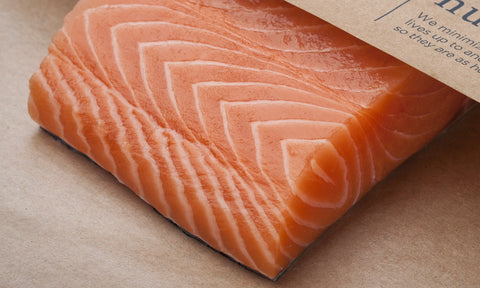 Salmon Fillet, Verlasso Atlantic (skin off, pin bones out)