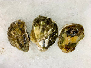 Oysters - Live, Fanny Bay (British Columbia) - 24 ct