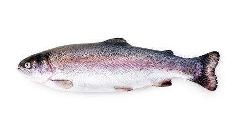 Trout - Whole, Mt. Lassen Rainbow Trout - avg 1.5 lb