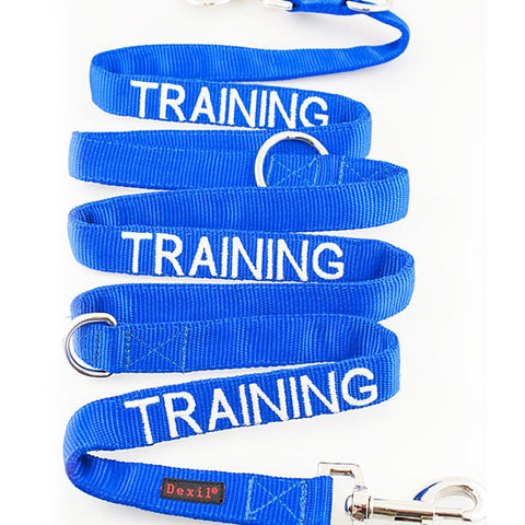 Friendly Dog Collars - Blue 'TRAINING' Lead - 210cm