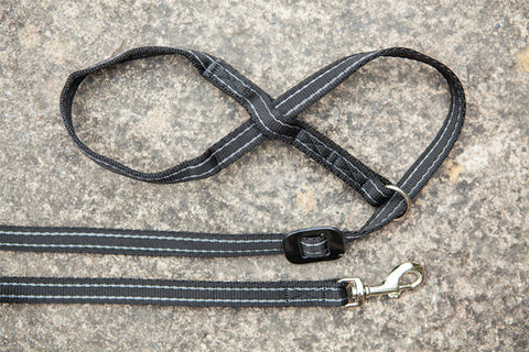Gencon All-In-1 Clip To Collar - Dog Headcollar/Halter & Lead In One - Black/Silver Grey
