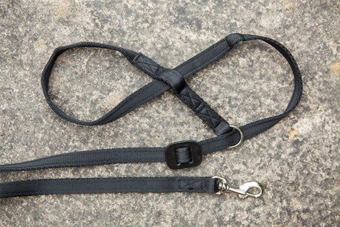 Gencon All-In-1 Clip To Collar - Dog Headcollar/Halter & Lead In One - Black
