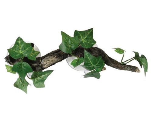 Fadulla - Sucker Mounted Branch with Flora
