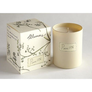 Illumens Abbaye Poire 1796 Candle in Glass
