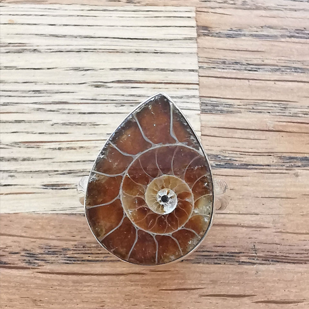 Ammonite Ring Sterling Silver Ring Teardrop Size Q