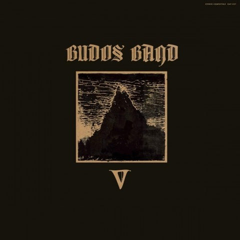 The Budos Band ‎– V : Daptone Records ‎– DAPT-057 : Vinyl, LP, Album