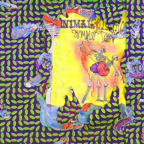 Animal Collective ‎– Ballet Slippers : Domino ‎– WIGLP462 : 2 × Vinyl, LP, Stereo Vinyl, LP, Single Sided, Etched, Stereo All Media, Album