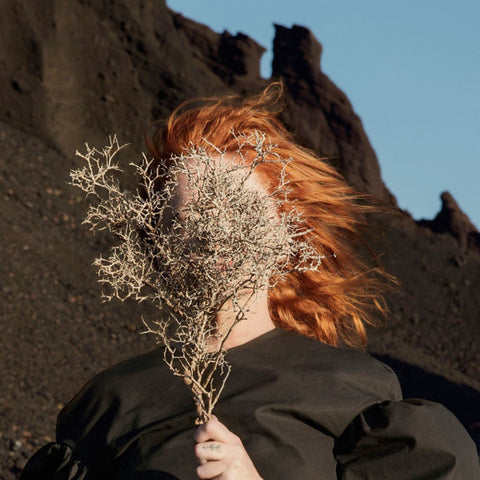Goldfrapp ‎– Silver Eye : Mute ‎– 9669-1 : Vinyl, LP, Album Country: USA & Canada