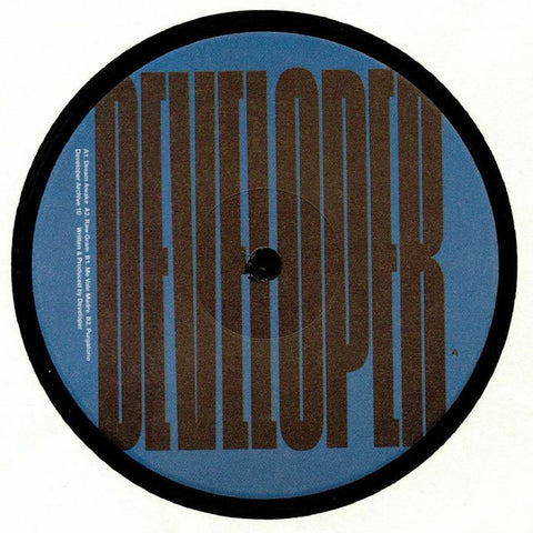 "Developer ‎– Archive 10 : Developer Archive ‎– DEVELOPER010 : Vinyl, 12"", 33 ⅓ RPM, EP"