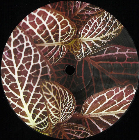 "Unknown Artist ‎– PP001 : Peculiar Plants ‎– PP001 : Vinyl, 12"", Limited Edition, Vinyl Only"