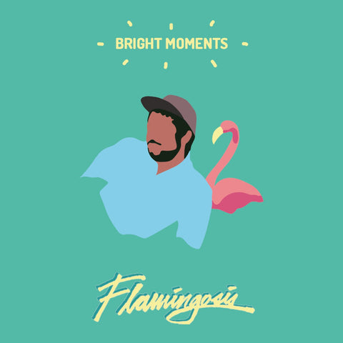 Flamingosis ‎– Bright Moments : Vinyldigital.de ‎– VinDig203 : Vinyl, LP, Album