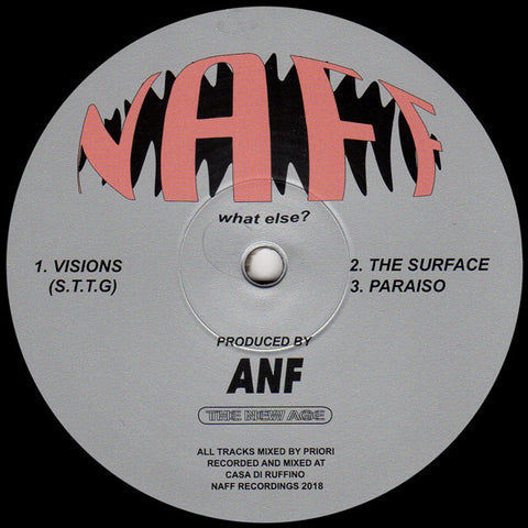 "ANF ‎– Visions : NAFF ‎– NAFF002 : Vinyl, 12"", Stereo"