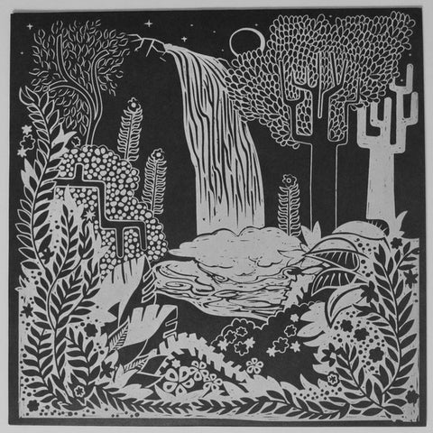 "Garrett David & Colin Johnson (11) ‎– Fern Grotto : Night Sea Journey ‎– NSJ1 : Vinyl, 12"", 33 ⅓ RPM, 45 RPM, EP"