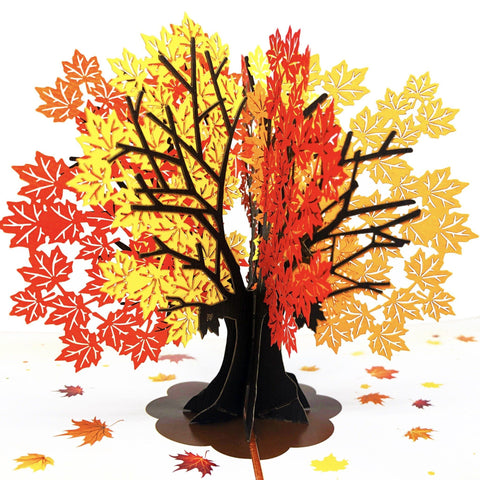 Autumn Maple Tree Pop Up Card Anthea Cards