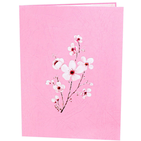 Cherry Blossom Pop Up Card Anthea Cards