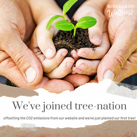 we have joined tree nation co2 emissions