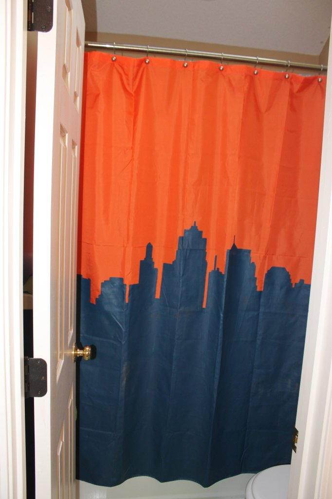 custom painted shower curtain