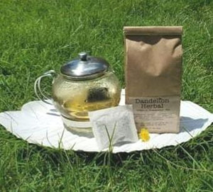 Dandelion Herbal - Pregnancy Tea