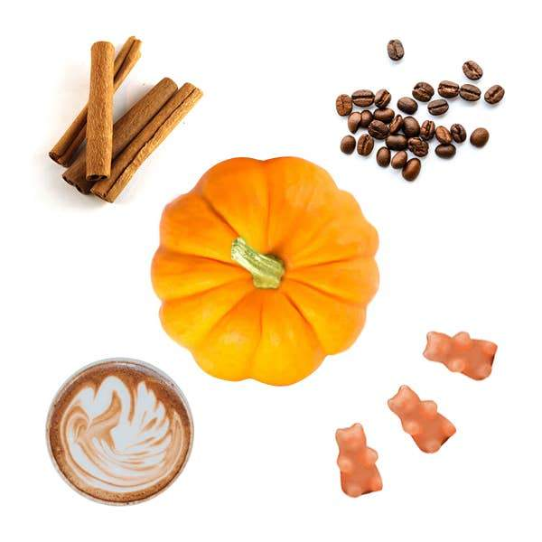 Happy Wax: Pumpkin Spice Latte Wax Melts - 2 oz Pouch -*Seasonal Scent*