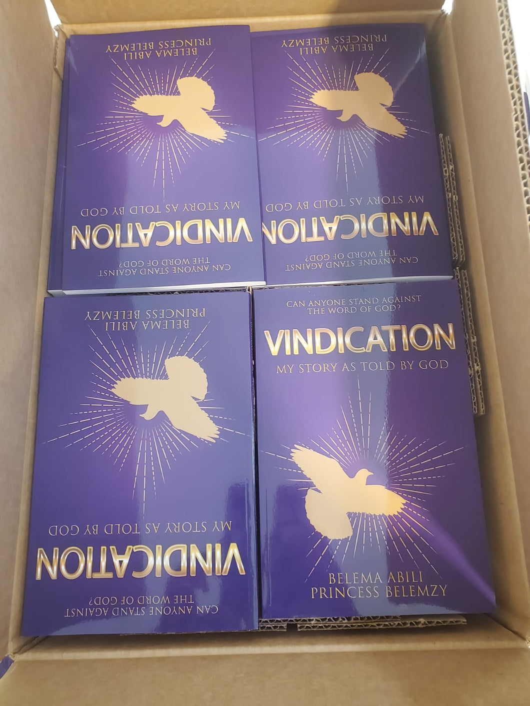 80 Books Bulk Box of Vindication: My Story as told by God (Hardcover)