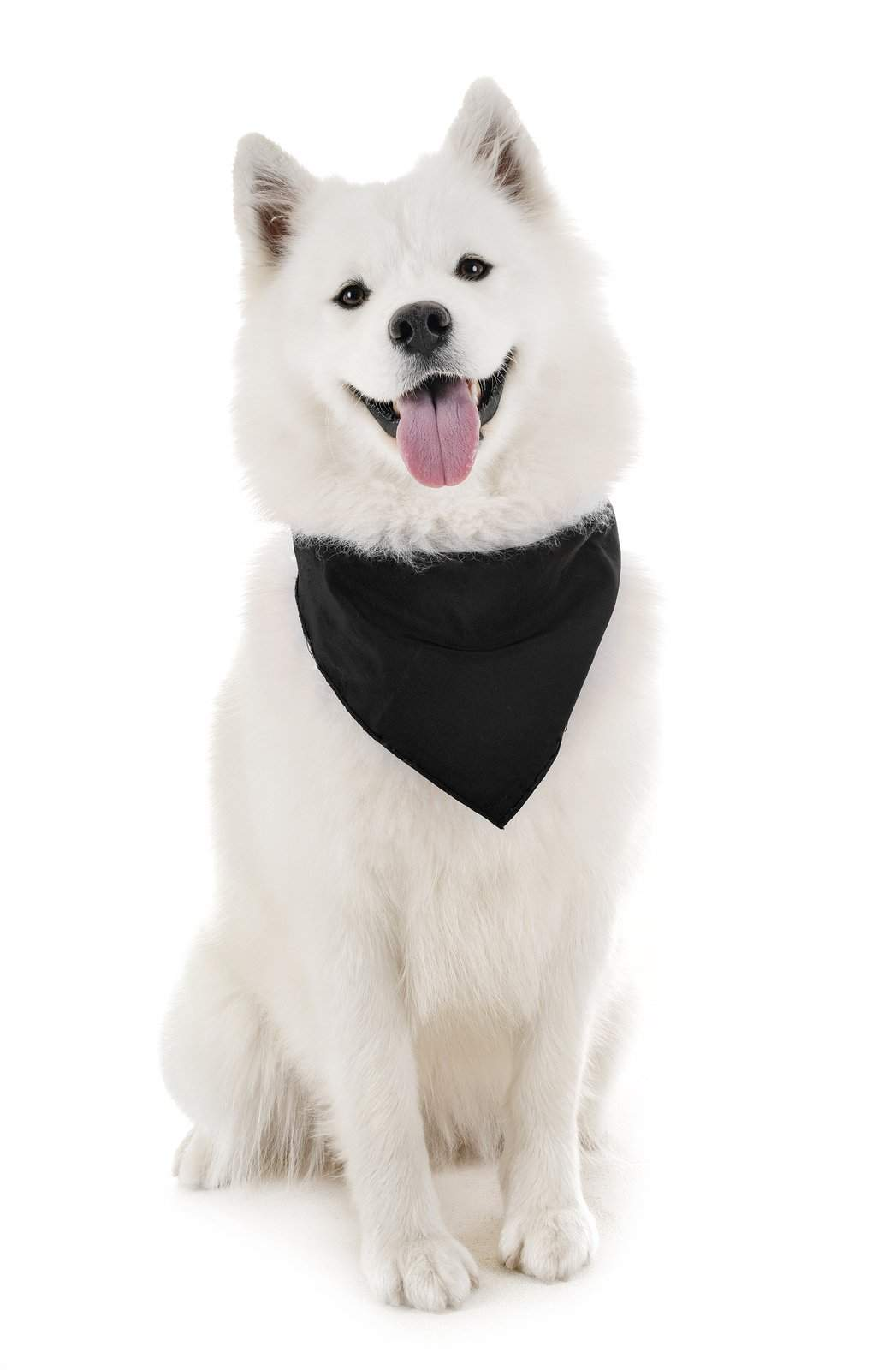 Dog Bandanas - 6 Pack - Scarf Triangle Bibs for Small, Medium and Large Puppies, Dogs and Cats