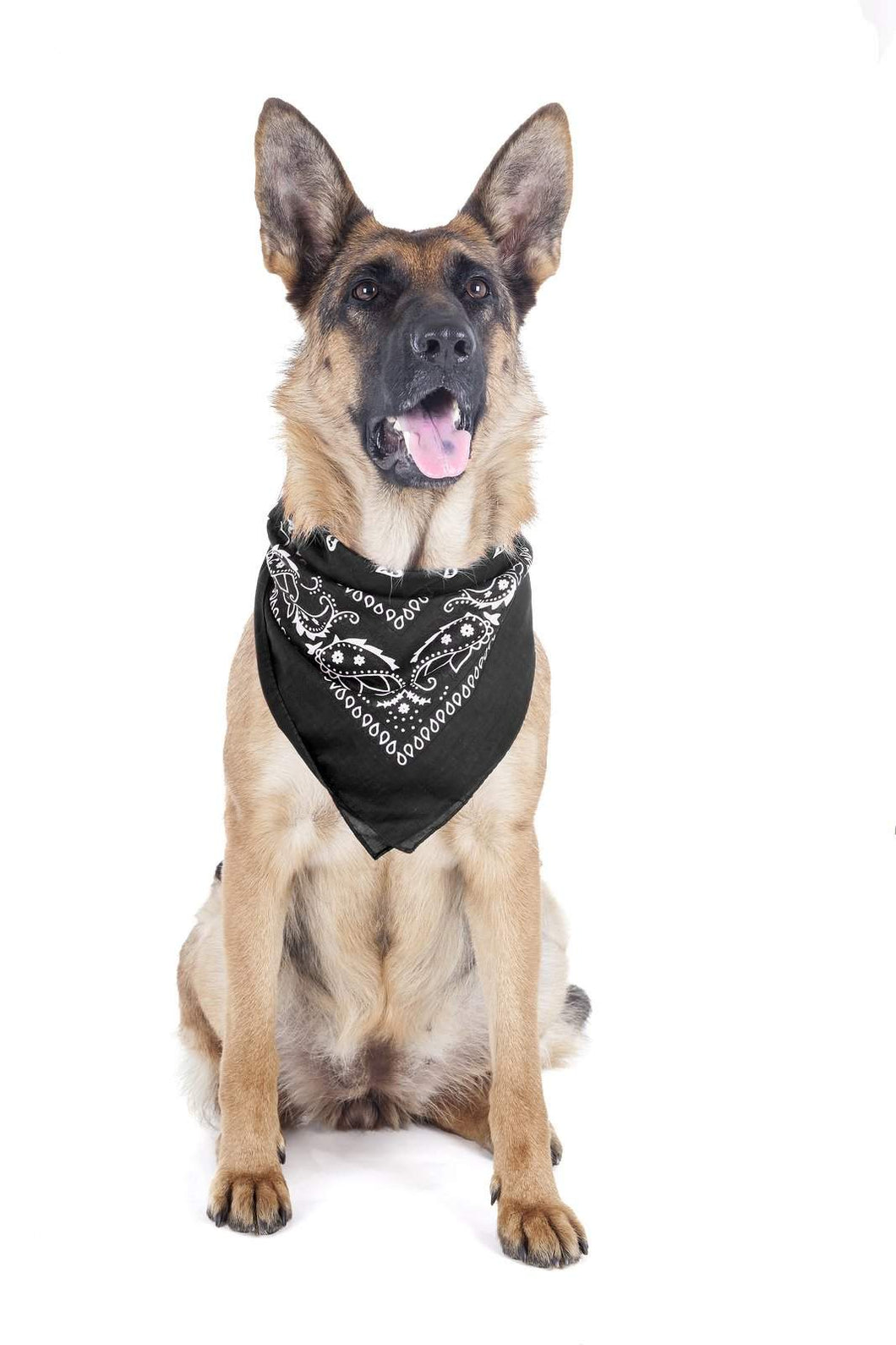 Mechaly 4 Pack Paisley Polyester Pets Dogs Bandana Triangle Shape  - Oversized (Black)